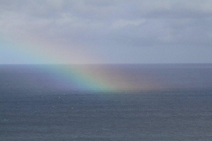 Rainbow-in-the-sea